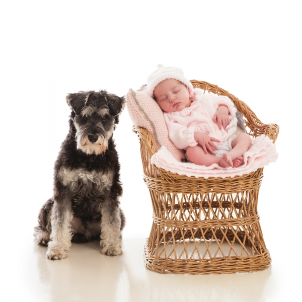 Newborn baby with dog  professional portrait Tipperary Ireland Ni Riain photography