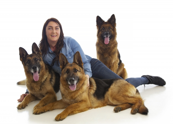 German Shepherd Alsatian dog pet studio portraits Ni Riain Photography Tipperary ireland