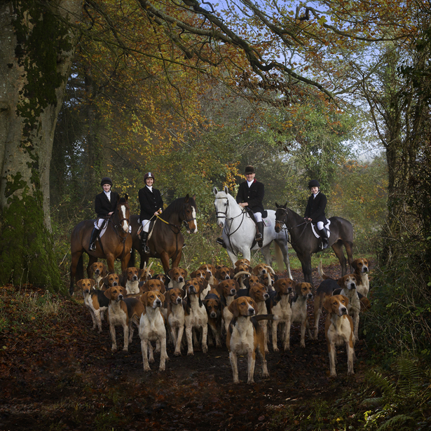 RDS Dublin Horse Show Winners Ni Riain Photography