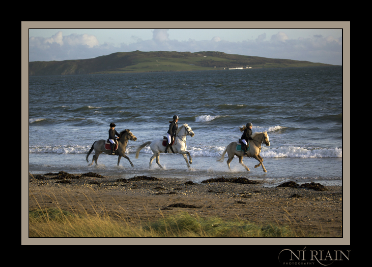 Create a splash with a Ni Riain Photography Equine Portrait