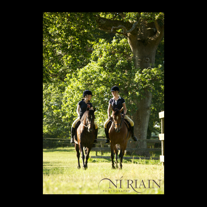 Ireland Equine Horse pony photographer Ni Riain Photography Thur