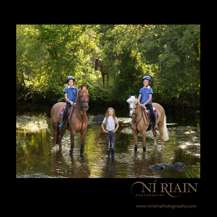 Willams Parc Stables Ennis Co Clare Ni Riain Fine Art Equine Pho
